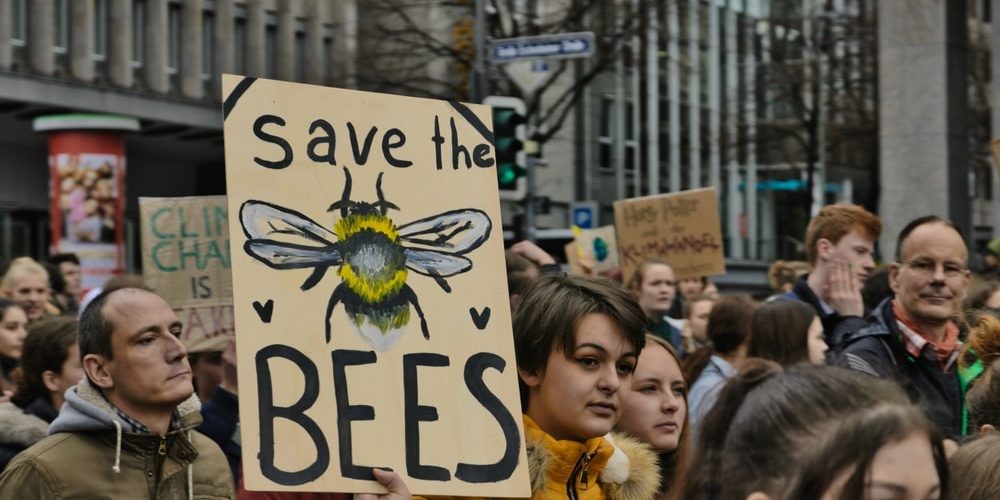 Да спасим пчелите